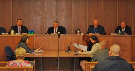 2016 Council Reorganization 1